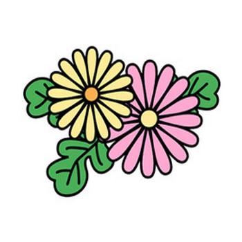 菊 - 素材【クリップアート】 - 彩クリWEB