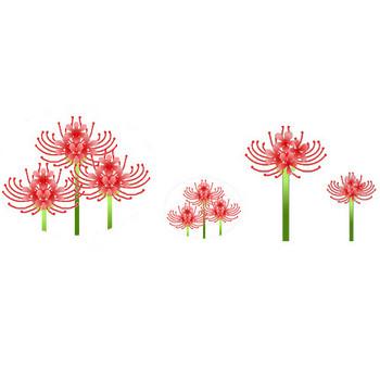 彼岸花・曼珠沙華イラスト素材背景 素材屋じゅん フリー無料画像絵写真 9月秋の花