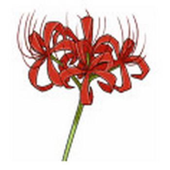 株式会社 コミュニティ・アドバンテージ|イラスト素材 季節の花