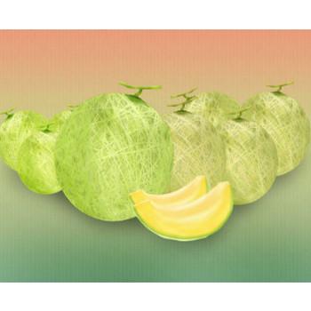 メロンイラスト - 無料でダウンロード可能な果物素材★ - チコデザ