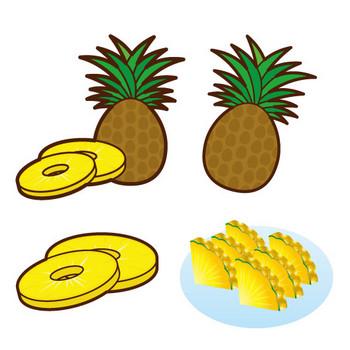 [フリーイラスト] 9種類のパイナップルのセットでアハ体験 - GAHAG | 著作権フリー写真・イラスト素材集