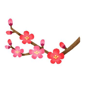 梅の花 | フリーイラスト素材 イラストラング