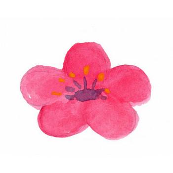 梅|Sui-Sai|水彩画イラストフリー素材集