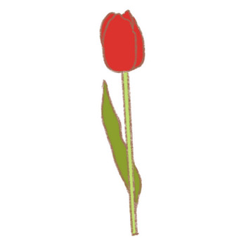「12月15日誕生花 |チューリップ」無料(フリー)イラスト素材 | スピリチュアル系の可愛い無料イラスト「スピタン」