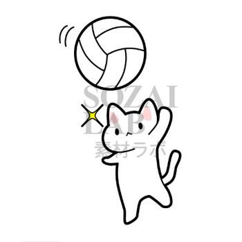 バレーボール猫のイラスト | 無料イラスト素材|素材ラボ