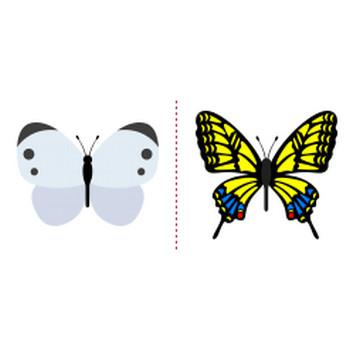 「蝶」イラスト無料