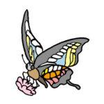 蝶 フリーイラスト・画像集めてみた!