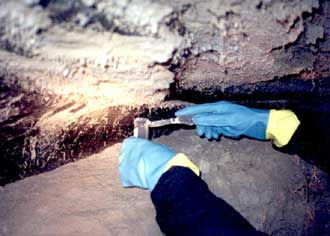 NASA astrobiologist Dr. Richard Hoover takes ice samples from Alaskan permafrost.