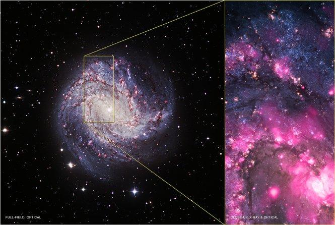 Lado a lado de la imagen de la galaxia espiral M83.  La izquierda es una imagen óptica del Telescopio Muy Grande en Chile.  El derecho es una imagen compuesta que muestra datos de rayos X de Chandra en los datos de color rosa y óptico del Telescopio Espacial Hubble en azul y amarillo.