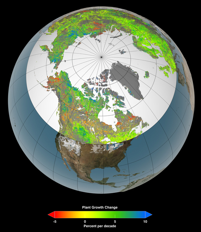 Global warming affects plants in northern hemisphere, NASA chart