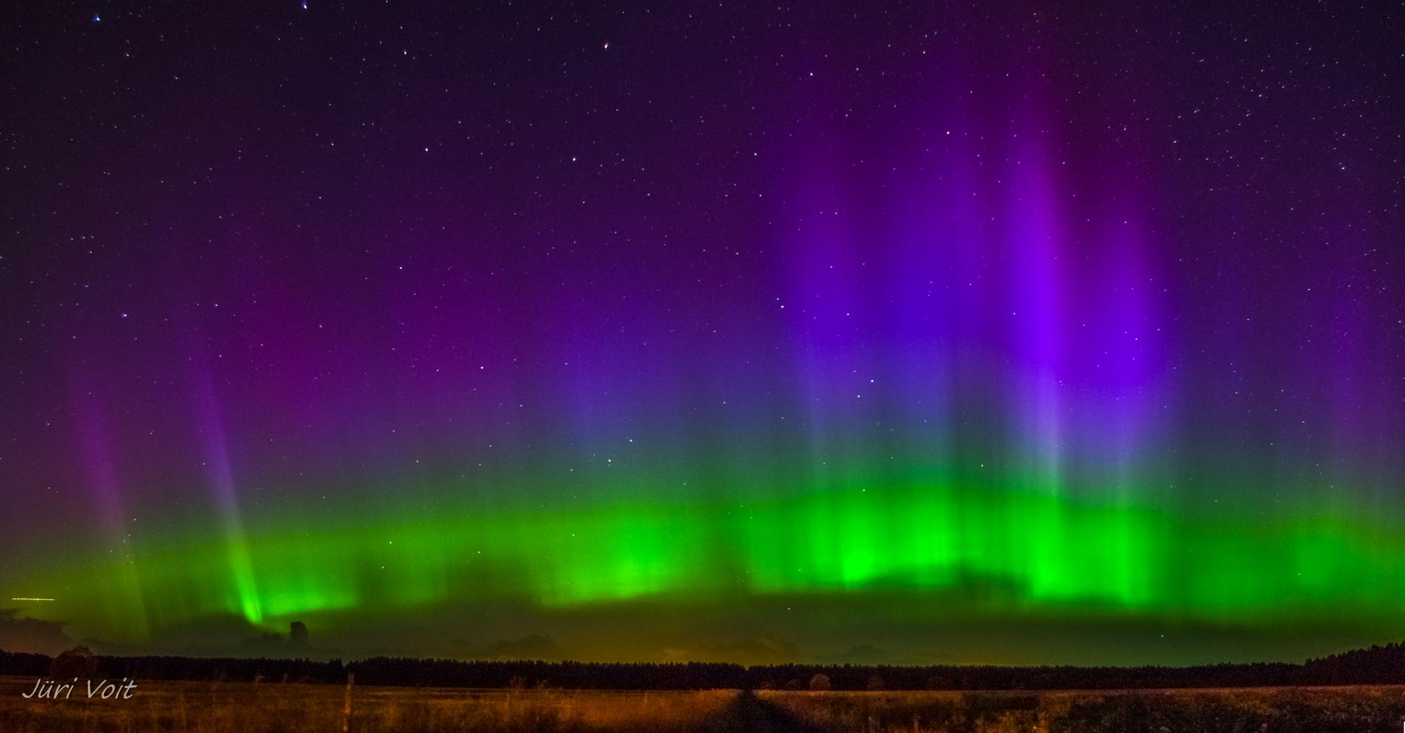 Purple and Green Aurora in Estonia  NASA