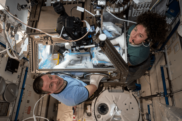 astronauts andrew morgan and jessica meir at work inside the space station
