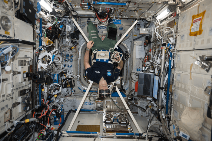 astronaut Thomas Pesquet performing the Gravitational References for Sensimotor Performance (GRASP) experiment
