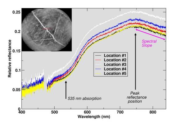 ChemCam on NASA's Curiosity Mars rover examined a brushed area