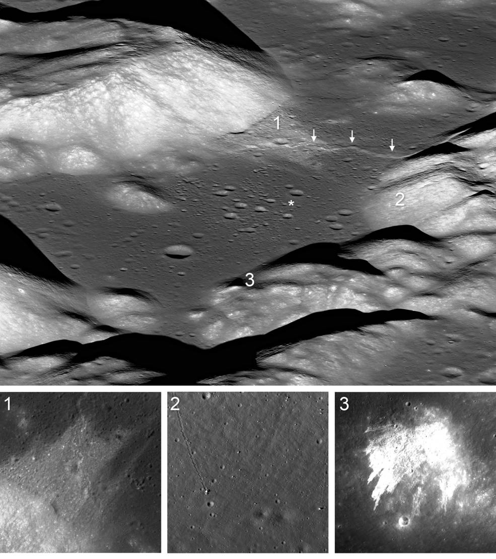 Evidence for moonquakes on Lee-Lincoln fault scarp