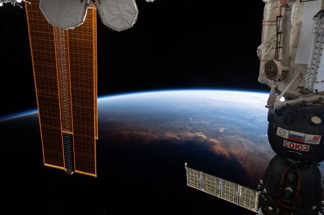Elon Musk on NASA Space Orbit Elon, Here's What Elon Musk has responded to NASA Tweet about Space Orbit