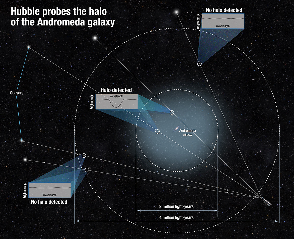 hight resolution of hubble sees and measures the andromeda galaxy