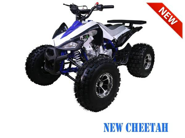 Nashua Sports and Cycle Cheetah ATV