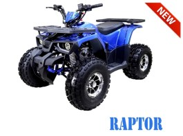 TaoTao Raptor