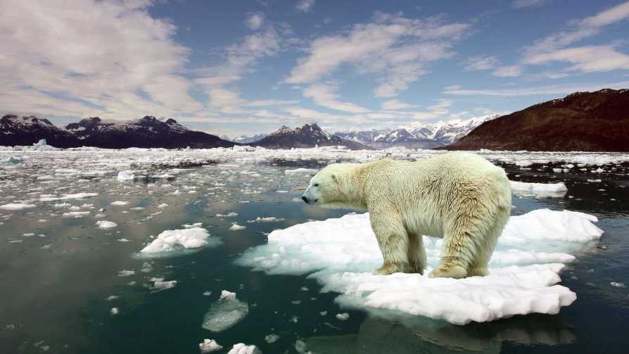 Global warming and climate change