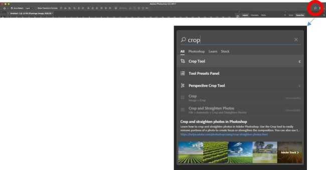 Adobe Photoshop in-app search