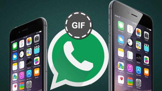iPhone Animated GIF Image