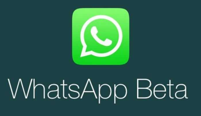WhatsApp Beta 2.17.20