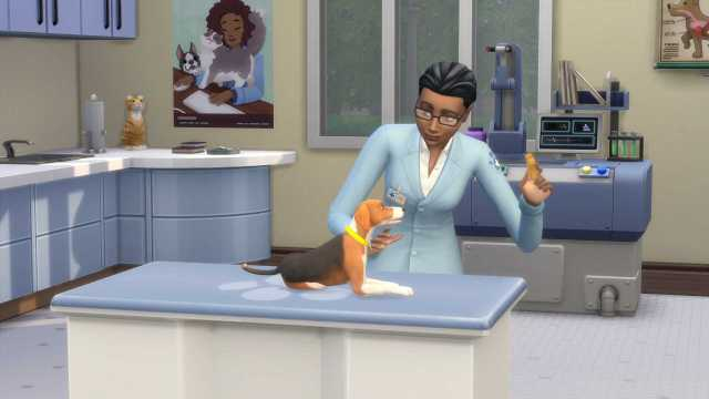 Sims 4 Expansion Pack
