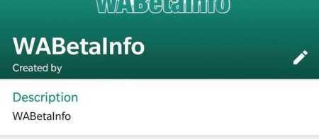 Whatsapp Group Description iOS