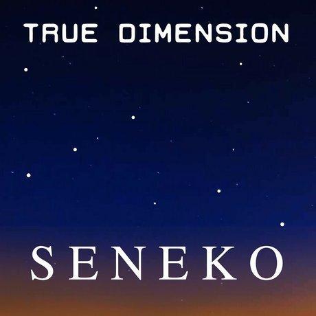 Seneko cover