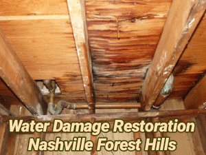 Water Damage Restoration Nashville Forest Hills