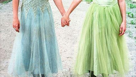 лесбиянки держатся за руки лучше