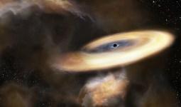 GökBilimciler Kara Deliği Buldu.