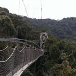 Ruanda'daki Orman Ve Ulusal Parkı Keşfetmek