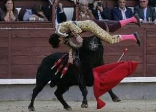 matador-nasil