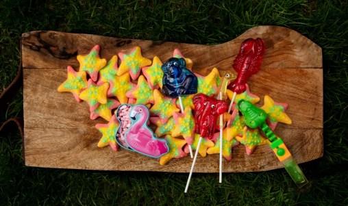 starfish gummies, lobster lollipop, gator candy, flamingo candy, hand poured lollipop, zoom animal lollipop, summer tourist snacks, tourist destinations, travel snacks,