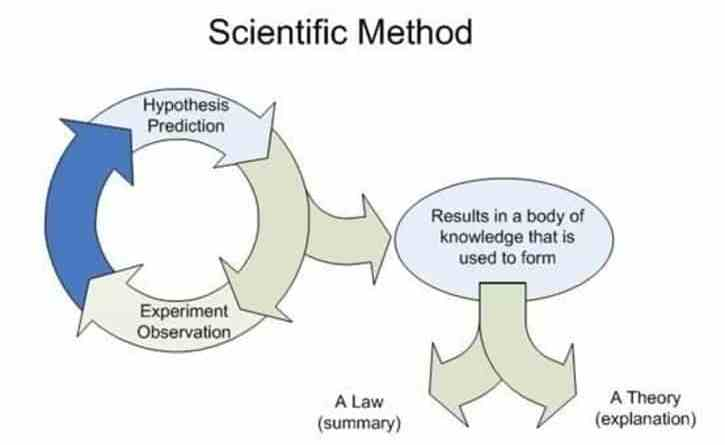 fact hypothesis theory law