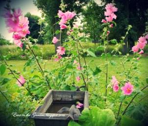 ogrody-polskie-12