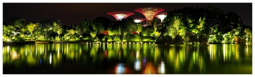 Gardens by the Bay z widocznymi w oddali sztucznymi drzewami w formie kwiatów. Wszytko jest bajecznie oświetlone i robi nieziemskie wrażenie. Światła odbijają się w wodzie jeziora.