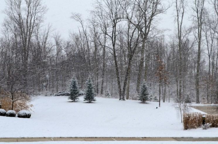 Snow in Fort Wayne, Mama ía