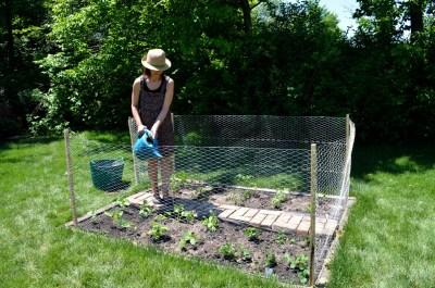 Vegetable garden, Mama ía blog