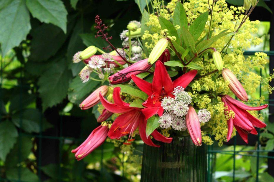 Blombukett liljor stjärnflocka alunrot jättedaggkåpa akleja