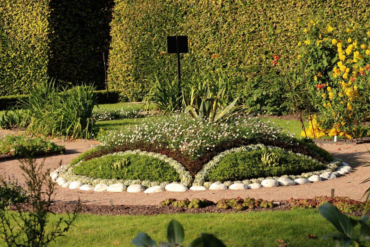 Natalia Lindberg Trädgårdsdesign - Göteborgs botaniska trädgård cirkel suckulenter