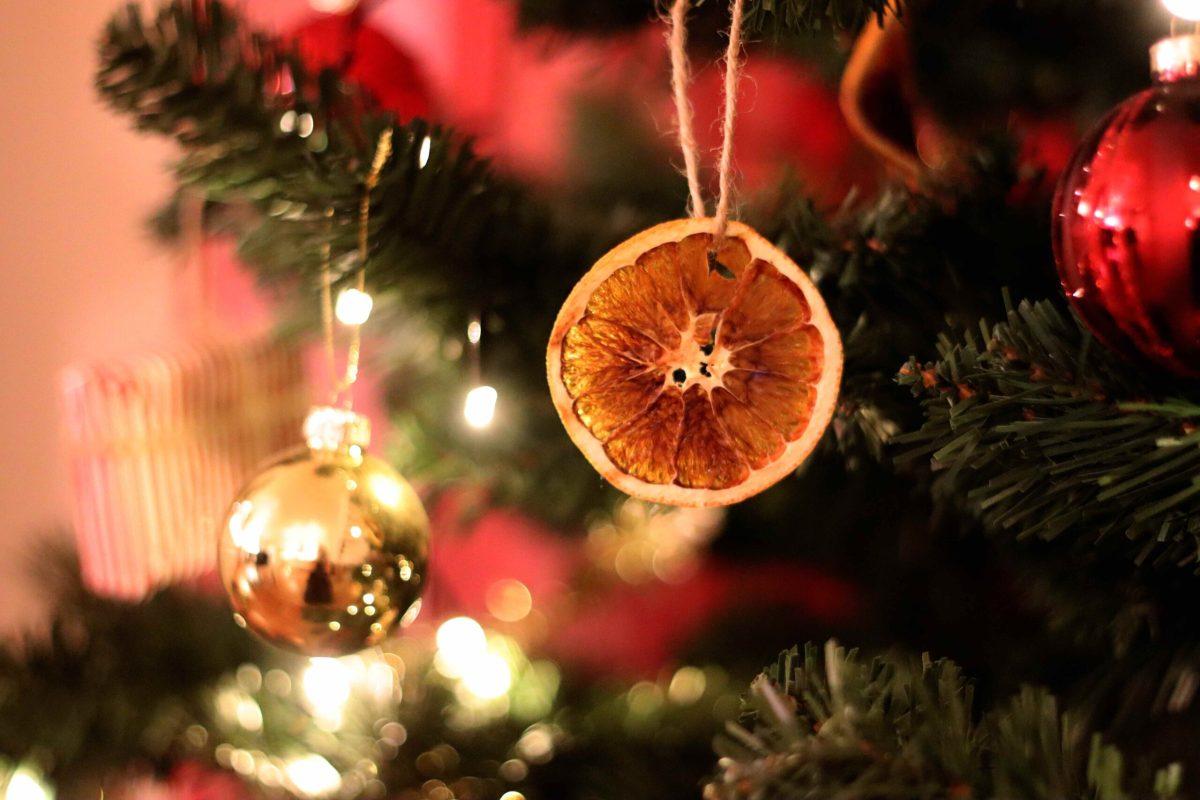 Natalia Lindberg - torkade apelsiner julgran