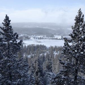 Old Faithful Winter