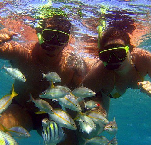 Mergulho Maracajaú Catamarã