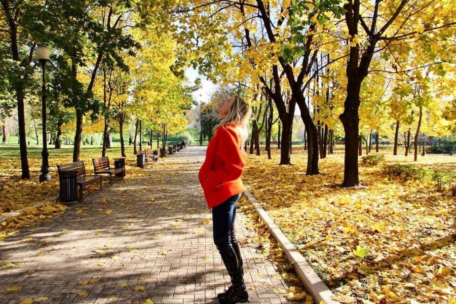 decorare casa con le foglie d'autunno Natasha Stefanenko