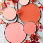 Color corallo per il guardaroba il beauty e la casa thedesigntabloid.com