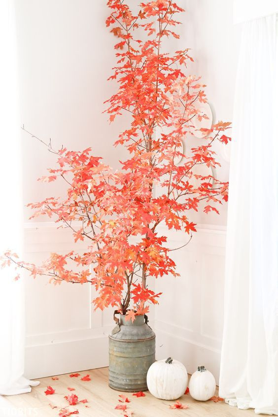 Idee facili per decorare la casa d'autunno https-::homemydesign.com:2019:38-most-beautiful-leaves-decor-to-welcome-fall: