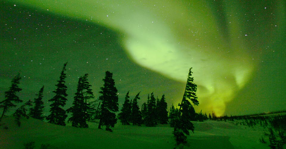 Trips Alaska See Northern Lights